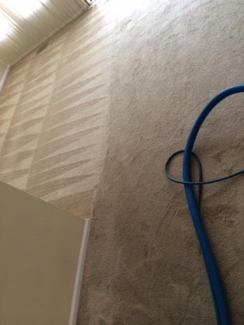 carpet-gallery